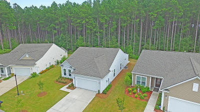 Summerville Single Family Home For Sale: 610 Eastern Isle Avenue