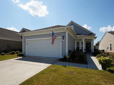 Summerville Single Family Home For Sale: 210 Waterfront Park Drive