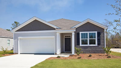 Berkeley County Single Family Home Contingent: 413 Buckhannon Lane