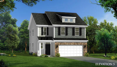 Berkeley County Single Family Home For Sale: 1 Suguree Drive