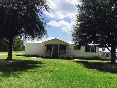 Walterboro Single Family Home For Sale: 579 Nunuville Road