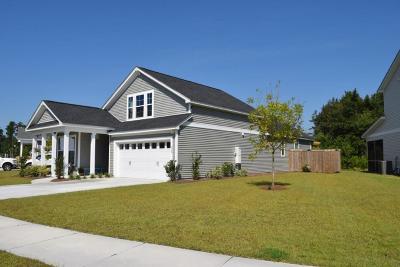 Berkeley County Single Family Home For Sale: 218 Palmetto Walk Drive