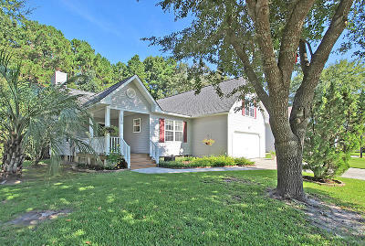 Summerville Single Family Home For Sale: 153 Iron Road