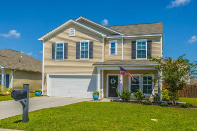Goose Creek Single Family Home For Sale: 200 Stone Crop Drive