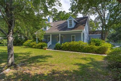 Mount Pleasant Single Family Home For Sale: 275 Molasses Lane