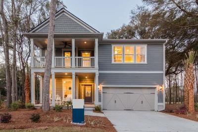 Charleston Single Family Home For Sale: 1102 Bright Court