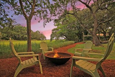 Charleston Single Family Home For Sale: 831 Saint Dennis Drive