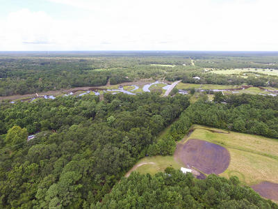 Johns Island Residential Lots & Land For Sale: 2630 Bryans Dairy Road