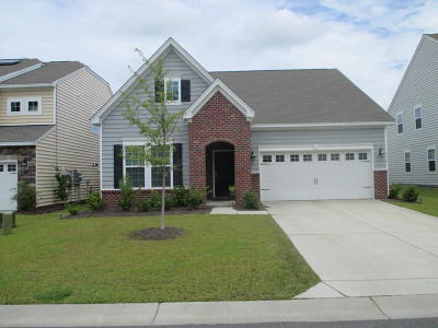 Ladson Single Family Home For Sale: 9742 Black Willow Lane