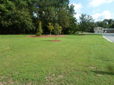 Residential Lots & Land For Sale: N Rhett Avenue