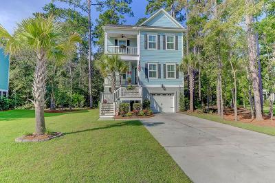 Charleston Single Family Home For Sale: 509 Sanders Farm Lane
