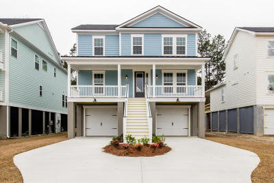 Berkeley County, Charleston County, Colleton County, Dorchester County Single Family Home For Sale: 420 Amalie Farms Drive