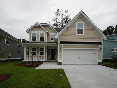 Stono Ferry, Stono Plantation Single Family Home For Sale: 5335 Birdie Lane