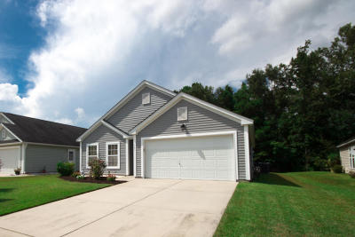 Goose Creek Single Family Home For Sale: 361 Briarbend Rd