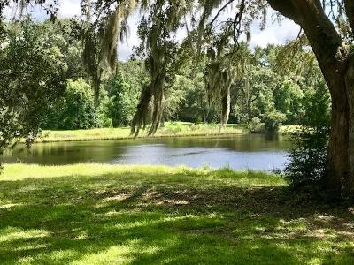 Johns Island Single Family Home For Sale: 1227 Michelle Lane