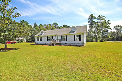 Ladson Single Family Home For Sale: 3366 Kirk Avenue