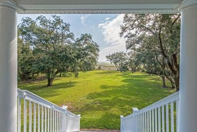 Wadmalaw Island Single Family Home For Sale: 2660 Cherry Point Road