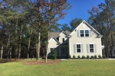 Summerville Single Family Home For Sale: 4007 Cascades Thrust