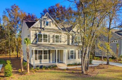 Summerville Single Family Home For Sale: 4015 Cascades Thrust