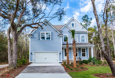 Summerville Single Family Home For Sale: 4028 Cascades Thrust