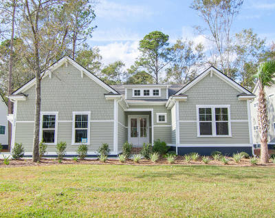 Summerville Single Family Home For Sale: 4014 Cascades Thrust