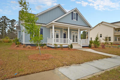 Ravenel Single Family Home For Sale: 4244 Home Town Lane