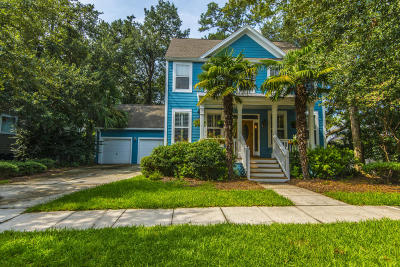 Charleston Single Family Home For Sale: 113 Corn Planters Street