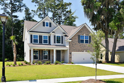 Summerville Single Family Home For Sale: 715 Kilarney Road