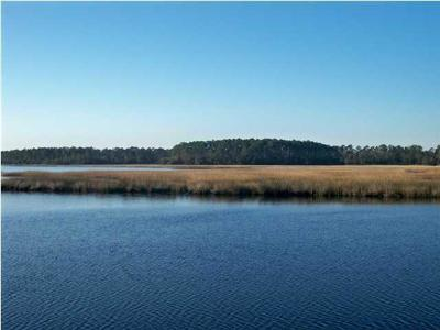 Johns Island Residential Lots & Land For Sale: 1111 Bulow Point Road