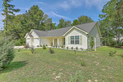Johns Island Single Family Home For Sale: 1603 Southwick Drive