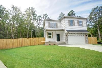 Ladson Single Family Home For Sale: 206 Ibis Drive