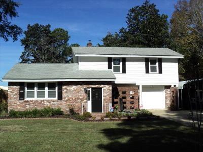 Johns Island Single Family Home For Sale: 3670 Morse Avenue