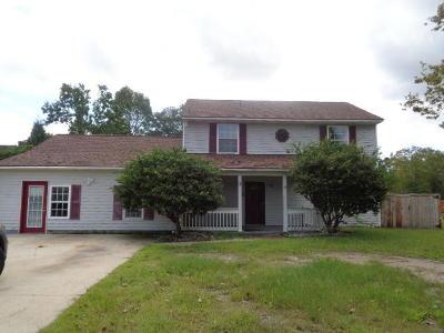 Summerville Single Family Home For Sale: 102 Bayleaf Court