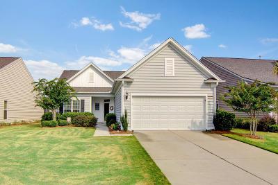 Summerville Single Family Home For Sale: 446 Eastern Isle Avenue
