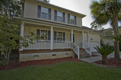 Summerville Single Family Home For Sale: 117 Apache Drive