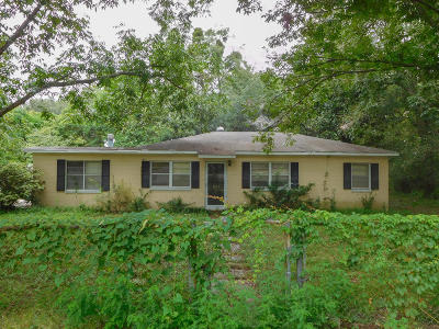 Johns Island Single Family Home For Sale: 3484 Cynthia Drive
