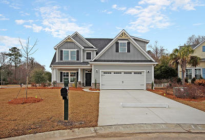 Summerville Single Family Home For Sale: 180 Carolinian Drive