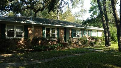 Charleston Single Family Home For Sale: 719 Swan Avenue