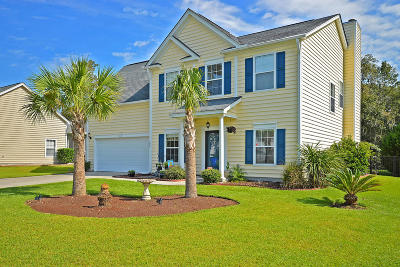 Charleston Single Family Home For Sale: 406 Blue Dragonfly Drive