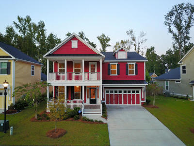 Summerville Single Family Home For Sale: 109 Evelyn Joy Drive