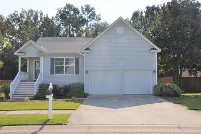 Johns Island Single Family Home For Sale: 3058 Penny Lane