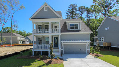 Charleston Single Family Home For Sale: 1418 Brockenfelt Drive