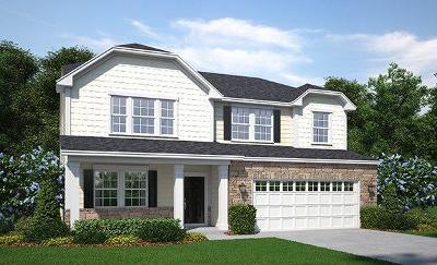 Single Family Home For Sale: 234 Witch Hazel Street