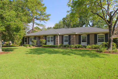 Mount Pleasant Single Family Home For Sale: 1381 E Vagabond Lane