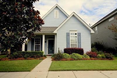 Single Family Home For Sale: 209 Dandelion Street