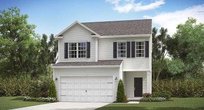Summerville Single Family Home For Sale: 760 Redbud Lane