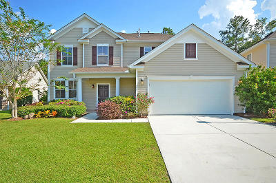 Summerville Single Family Home For Sale: 251 Austin Creek Ct