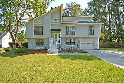 Summerville Single Family Home For Sale: 211 White Boulevard