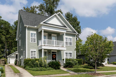 Charleston Single Family Home For Sale: 3011 Dolphin Watch Drive