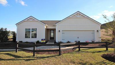 Johns Island Single Family Home For Sale: 5 Woodbury Drive